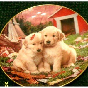 ROYAL DOULTON FALL IN LOVE GOLDEN RETRIEVER PLATE